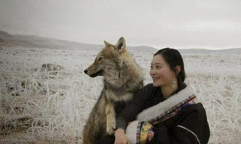 wolveee.jpg